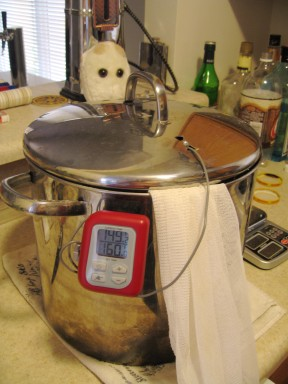Monitor the temperature throughout the mash.